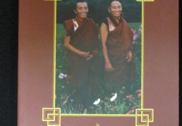"""Lion's Gaze- a Commentary on Tsig Sum Nedek"" by Khenchen Palden Sherab Rinpoche and Khenpo Tsewang Dongyal Rinpoche"