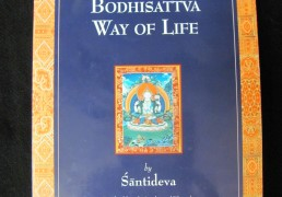 A GUIDE TO THE BODHISATTVA WAY OF LIFE by Shantideva, trans. by Vesna A. Wallace & B. Alan Wallace