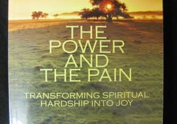 THE POWER AND THE PAIN: Transforming Spiritual Hardship into Joy by Andrew Holecek