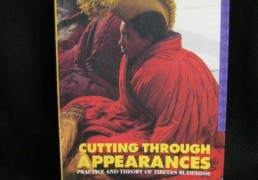 Cutting Through Appearances: Practice and Theory of Tibetan Buddhism