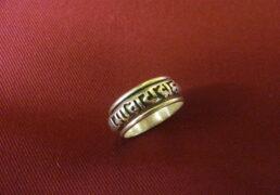 Spinning Silver Mani Ring