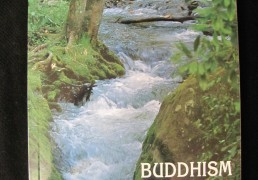 BUDDHISM FOR BEGINNERS by Thubten Chodron