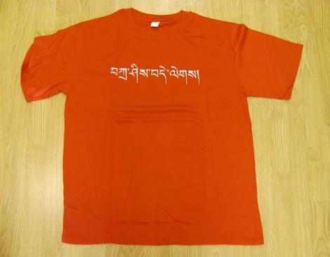 Embroidered Tashi Delegs Tee Shirt