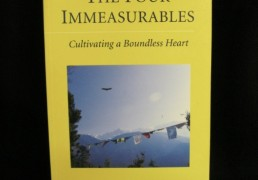 The Four Immeasurables- B. Alan Wallace